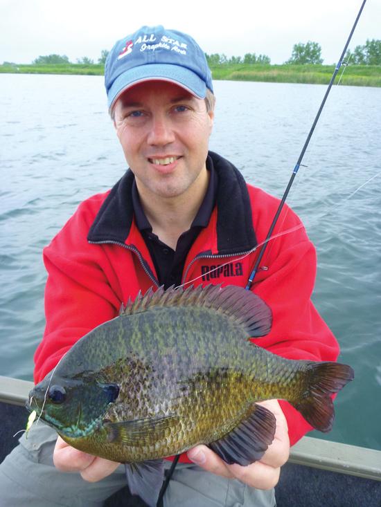 Late Summer Panfish Pattern