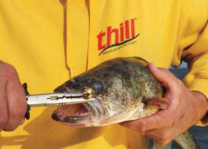 Cool Fishing Tools 2014