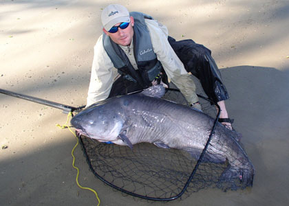A Future For Huge Catfish