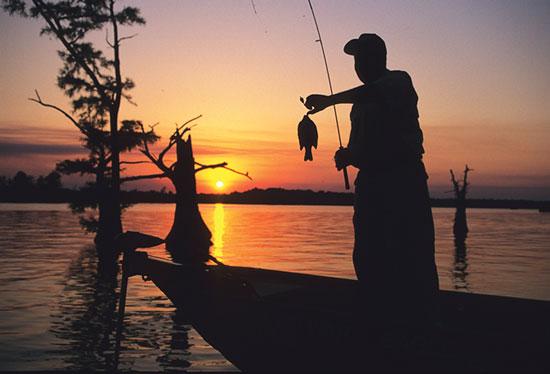 Bluegill Fishing Rivers
