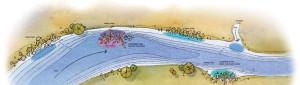 Blue-Catfish-River-Straight-Illustration-In-fisherman