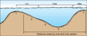 Riffle-Hole-Run-Illustration-In-Fisherman