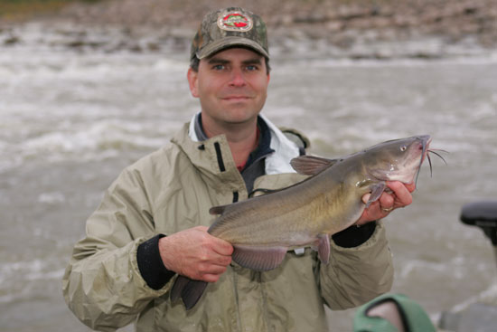 Catfish in Tailwater Areas