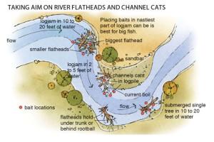 Taking-Aim-on-River-Flatheads-In-Fisherman