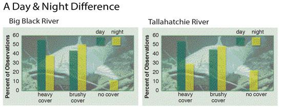 Flathead Catfish Day Phases