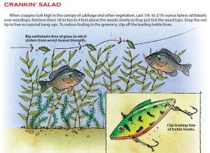 Cranking-Salad-In-Fisherman