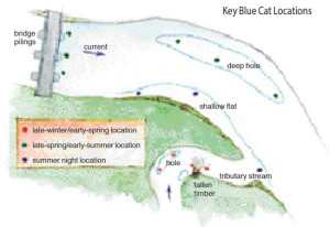 Key-Blue-Cat-Locations-Illustration-In-Fisherman