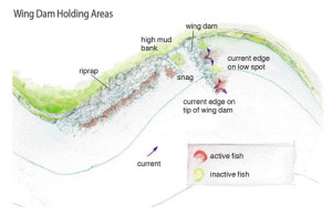Wing-Dam-Holding-Areas-Illustration-In-Fisherman