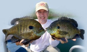 Two-Big-Bluegill-Sunny-Lead-In-Fisherman
