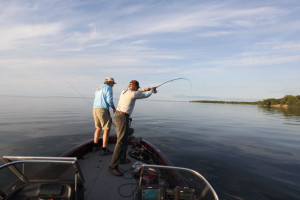 Boat-Bow-Fish-Fight-Line-In-Fisherman