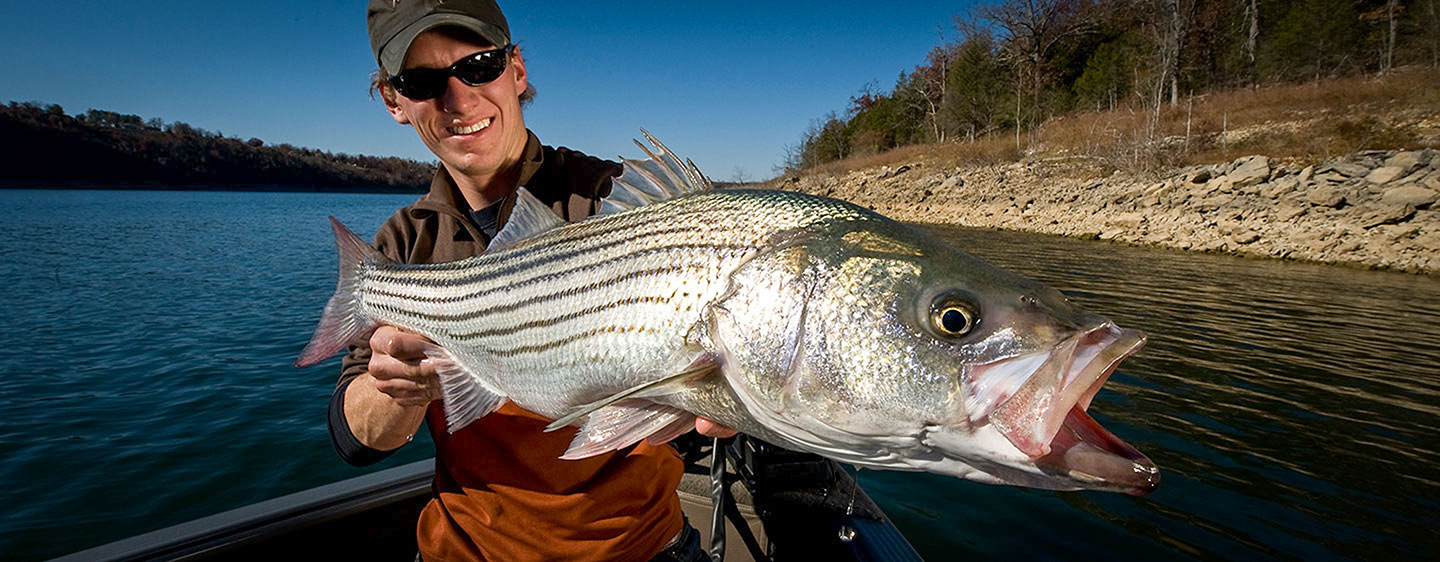 Striped Bass </br> Hottest Spots in the West