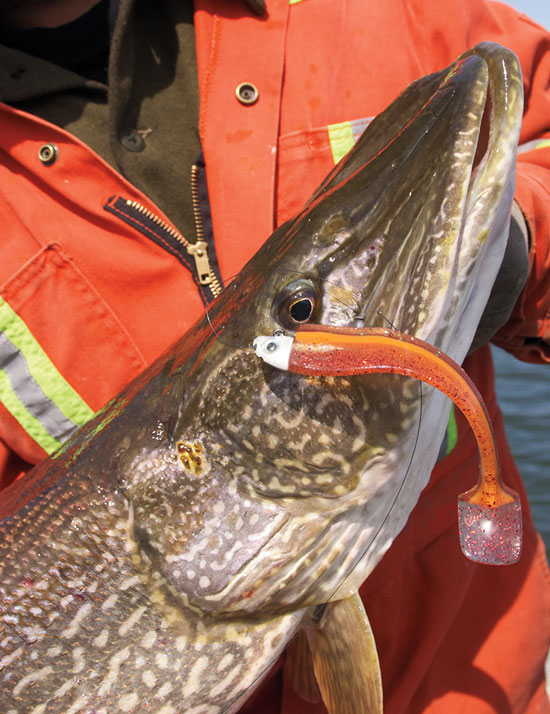 "Jigging Northern Pike trolling Musky blade bait 8.5/"" Lake Trout.. casting"