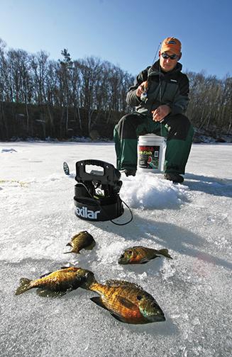 First Ice Bluegills