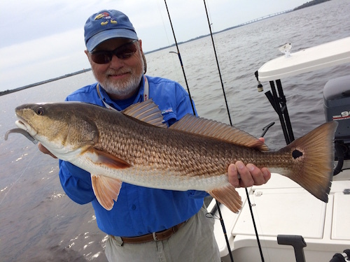 Midwest Finesse Fishing: February 2016--an update
