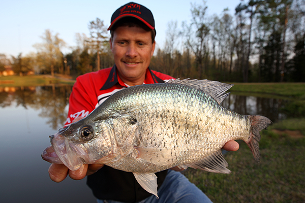 Crappie Length To Weight Conversion Chart