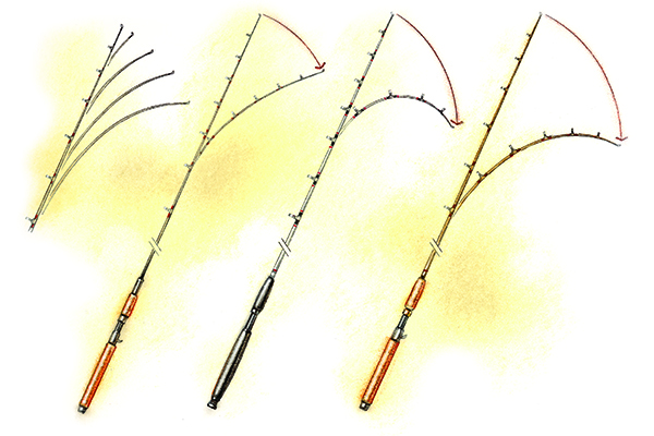 Fishing Rod Blank