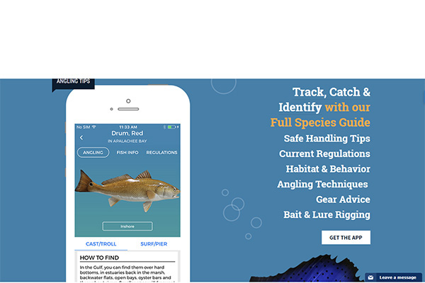 Best Fishing Apps