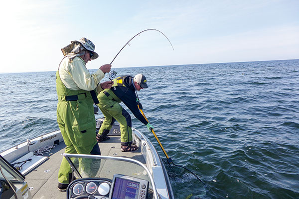 Vertical Walleye Fishing