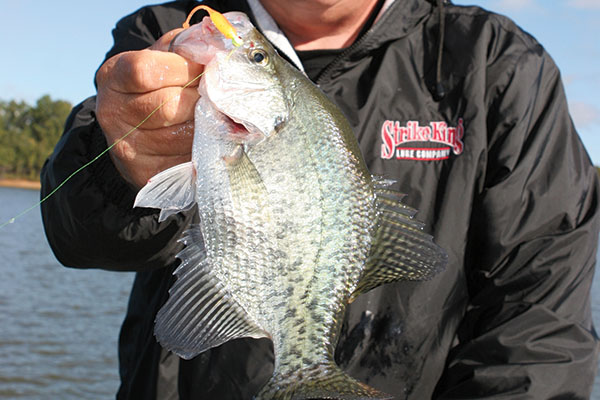 Mr.-Crappie-Favors-Shooting-Docks