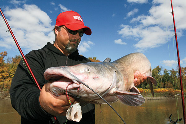 Using Cut-bait as an Alternative Catfish Bait