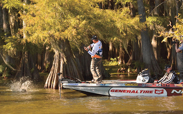 Softbait Trailers for Bass