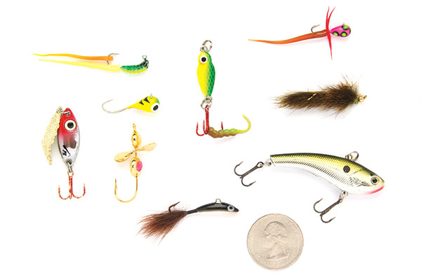 Top Baits for Winter Bass Fishing
