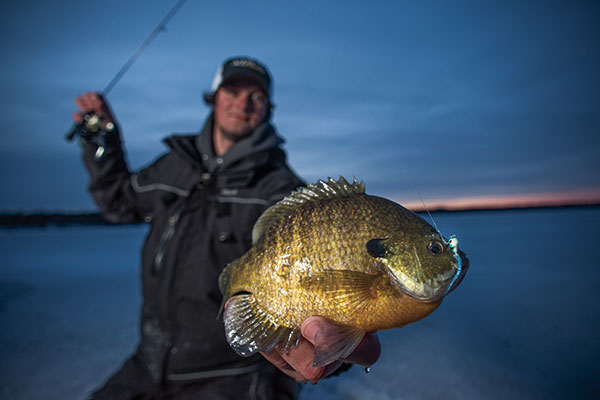 Quiver Panfish Plastics for Better Results