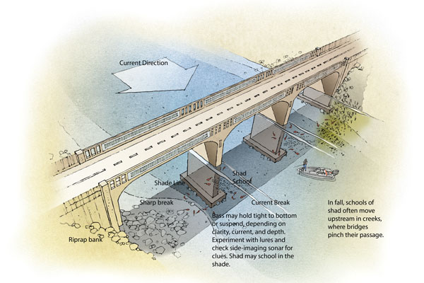 Fishing Bridges for Bass
