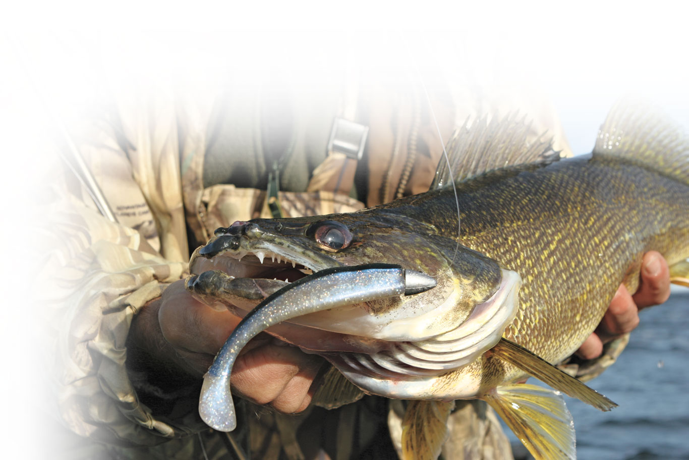 Paddletail Swimbaits are Walleye Candy