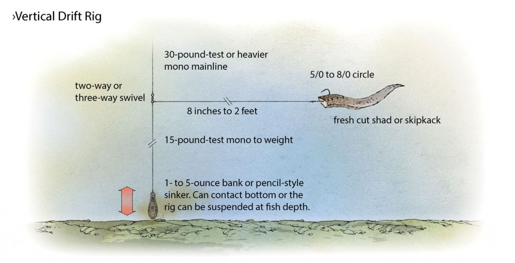 Vertical-Drift-Rig-for-Catfish