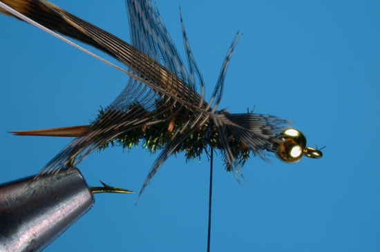 //www.flyfisherman.com/files/20-incher-tiffs/20-incher-tiffs-10.jpg