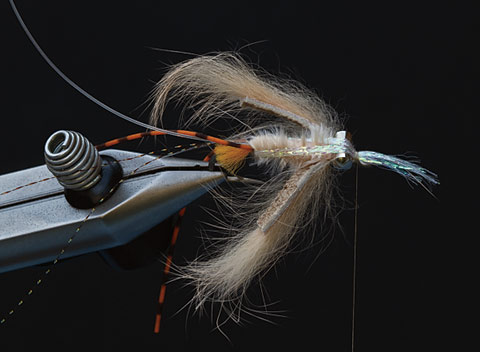 Avalon Permit Fly