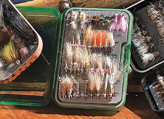Professional Guide Box By Umpqua