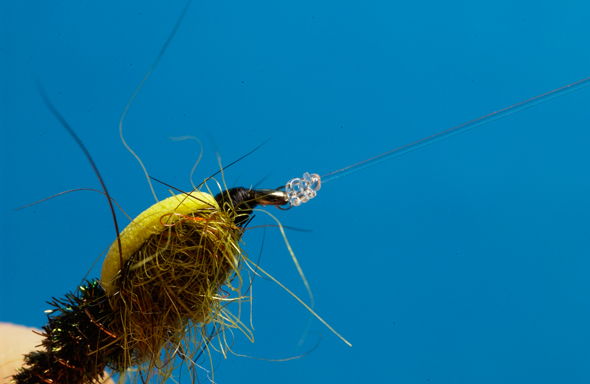 Fly Fishing Knots don't have to be a roadblock on your way to fly-fishing Nirvana.