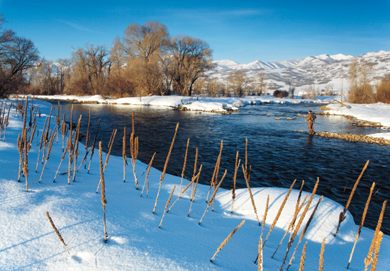Ski, snowboard, and fish Utah trout near Salt Lake City. Trout Fishing In Utah can be amazing all year round.