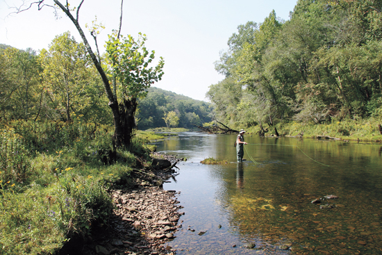 Arkansas Trout: Live Big on the Little Red