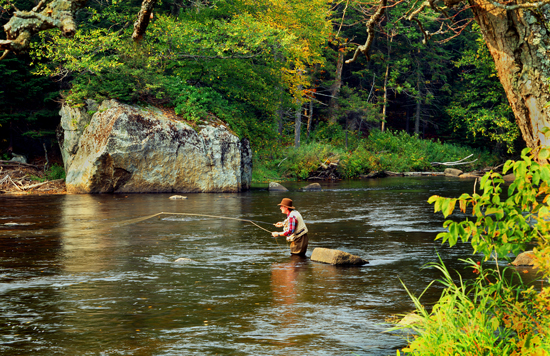 Adirondack park fly fisherman for Trout fishing ny