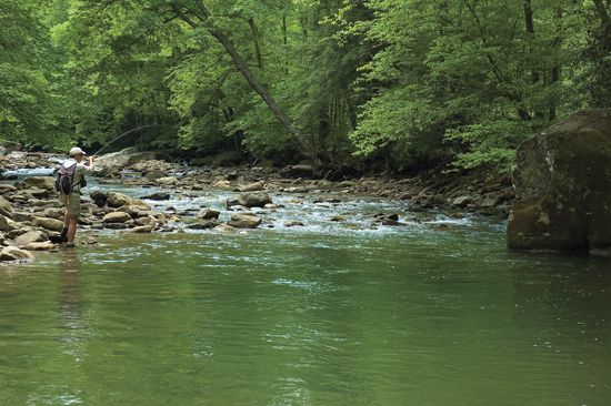 West Virginia Trout Streams Fly Fisherman