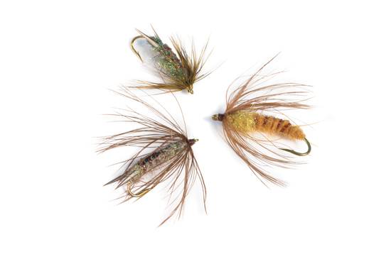 Soft-hackle Stone Fly