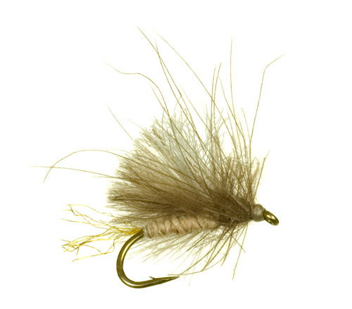 Corn Fed Caddis  The Corn Fed Caddis is a beefy, high floating dry fly fit for any water type. It