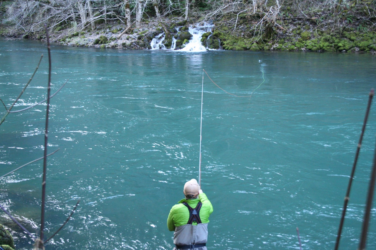 In Pictures: A Winter Steelhead Grab