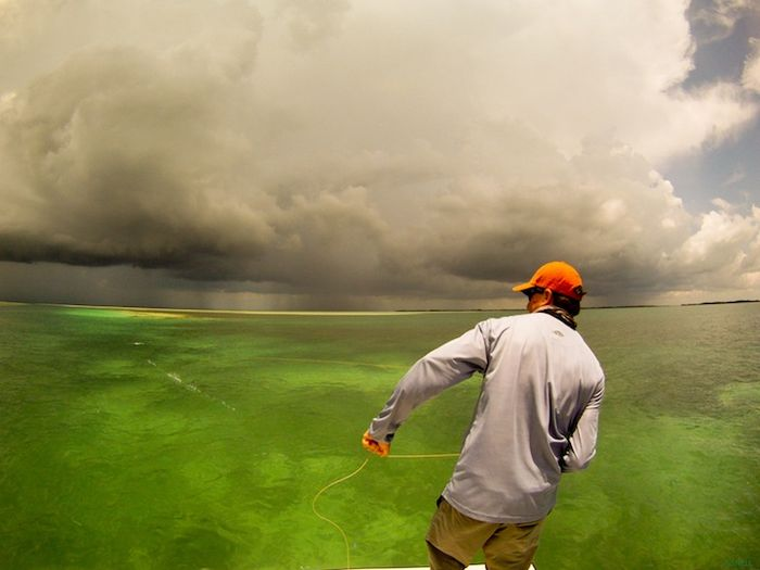 Captain Aaron Snell Photo When fishing the salt water flats visibility is everything.  If you