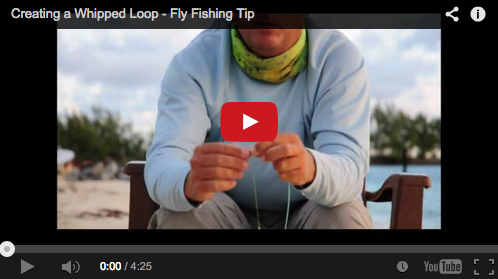 Whipping a Loop in your Fly Line