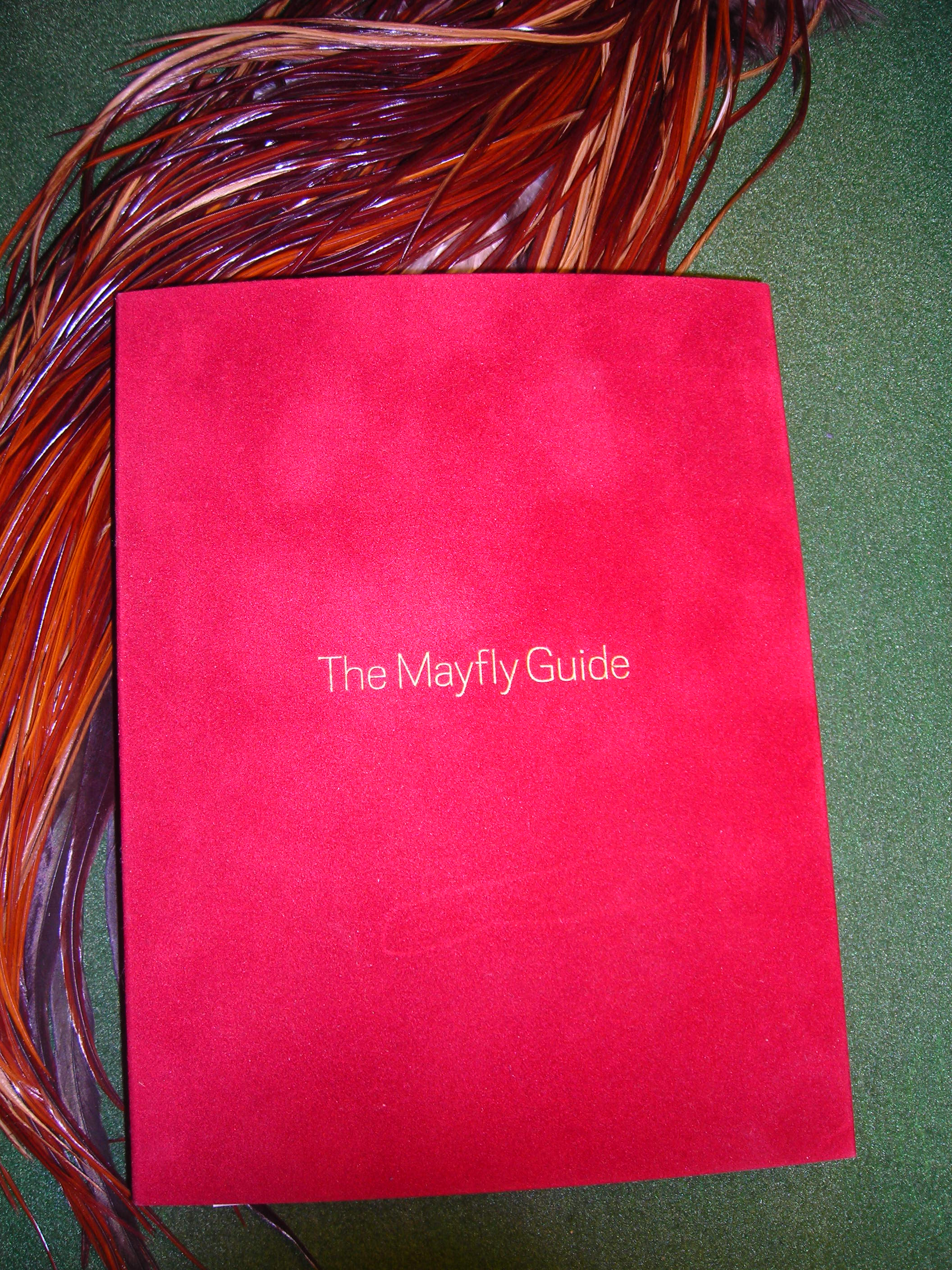 Caucci's New Mayfly Guide