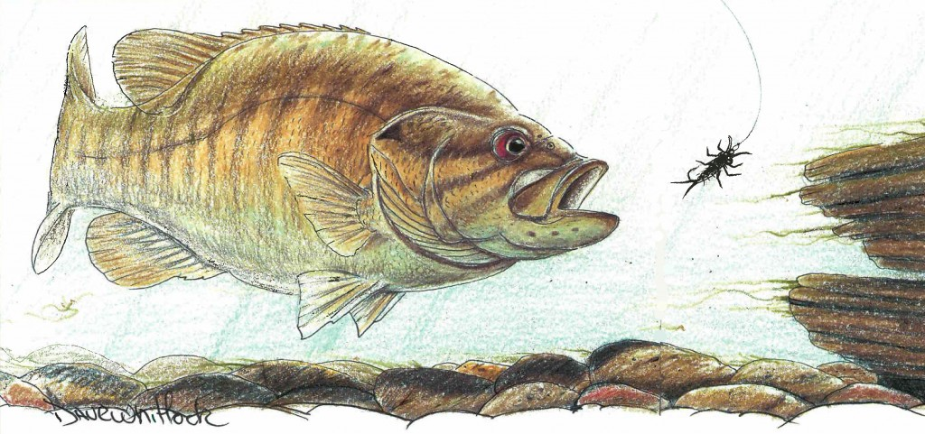 NYMPHS FOR SMALLMOUTH