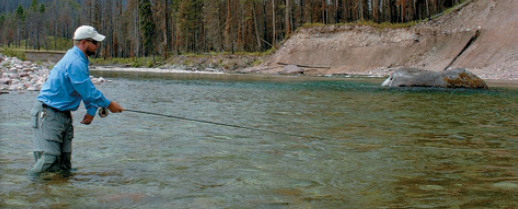 The South Fork of The Flathead River