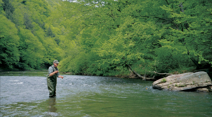 The hatches are coming back, but even without them, the 30-inch-plus browns in the Clarion River have plenty to eat . . .
