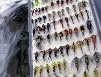 Hot new Flies For Steelhead for the Great Lakes from Michigan to New York.