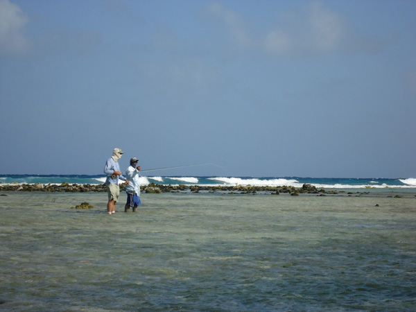 The entire Turneffe Atoll has been declared a marine preserve by the government of Belize, thanks