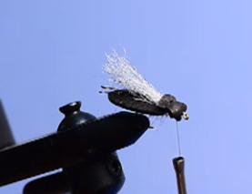 A video walkthrough on how to tie Cathy Beck's Super Beetle.